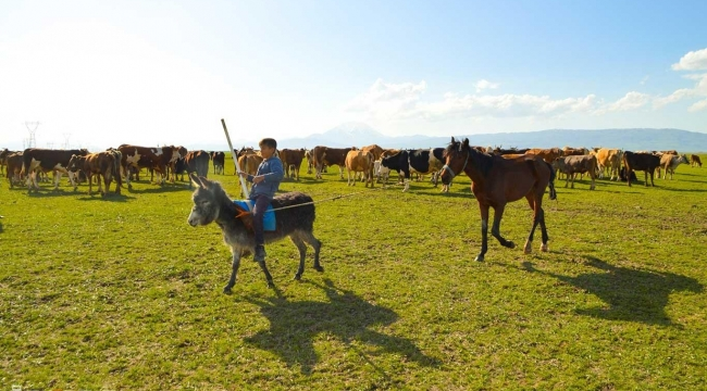 Çiftçilik ve hayvancılığın önemi çok daha iyi anlaşıldı