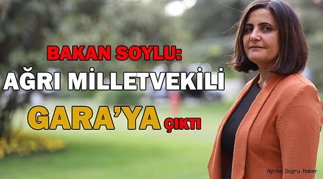 Soylu, Gara'ya giden HDP'li vekilin Dirayet Dilan Taşdemir olduğunu açıkladI