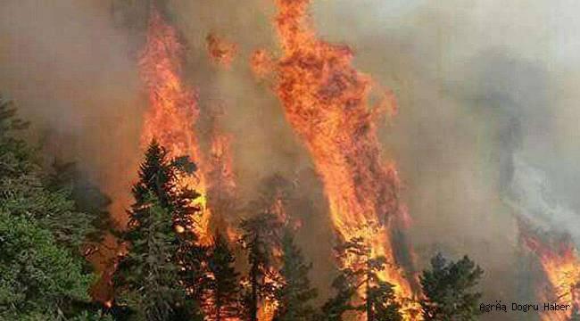 20 noktada orman yangınları devam ediyor
